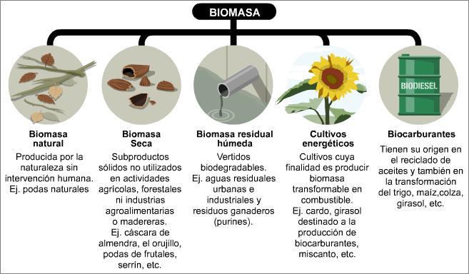 Resultado de imagen de biocombustible para primaria